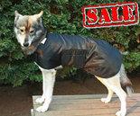 Hondenjas-Dogcoat