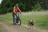 Treklijn voor 1 hond_