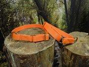 Kennelhalsbanden -Oranje-