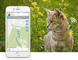 PetAlways - Mini GPS tracker_