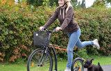 Kickbike dog adapter_