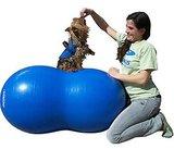 FitPAWS Peanut Blue 60cm_
