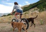 Cycleash - extra beugel met riem_
